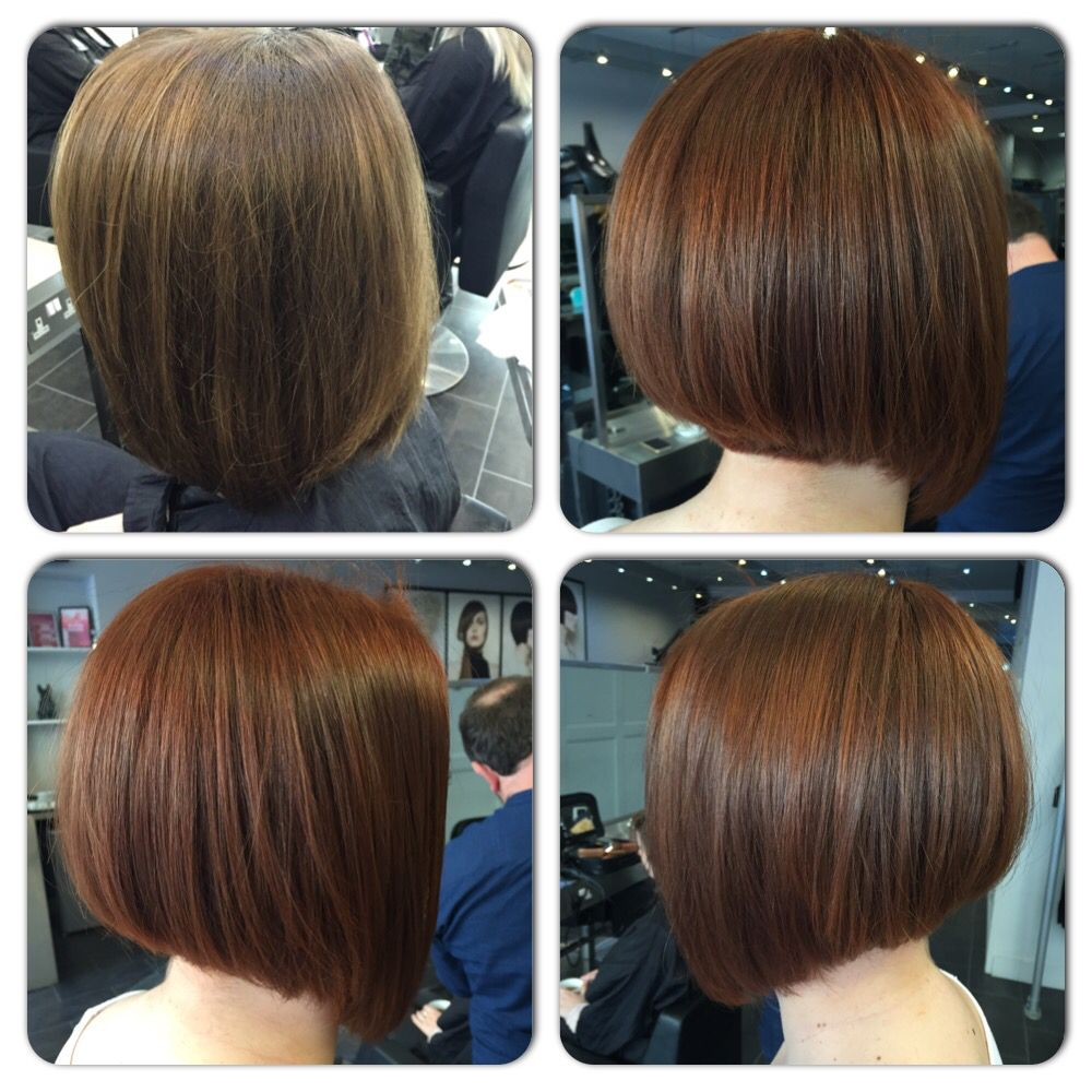 Copper inverted graduated bob | Short hair styles, Long hair styles, Bob hairstyles