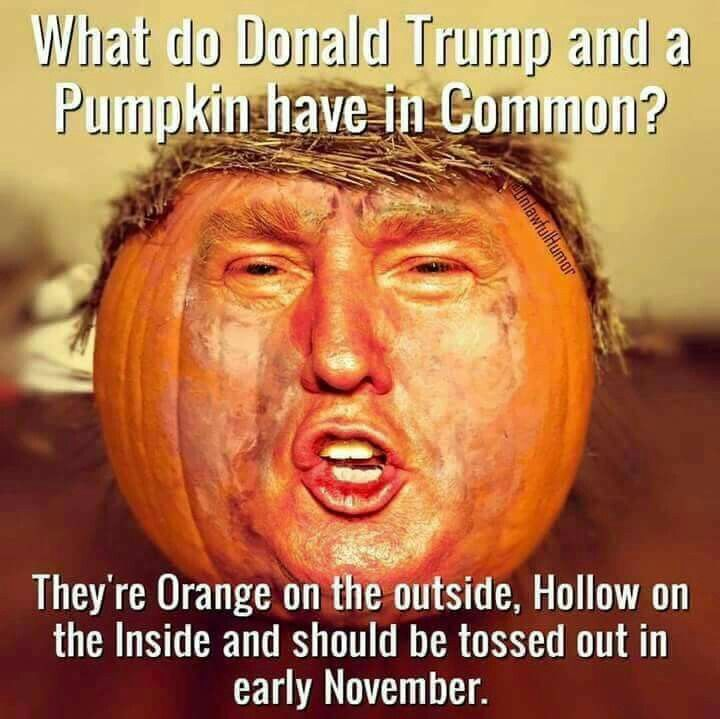 what do donald trump and a pumpkin have in common proud
