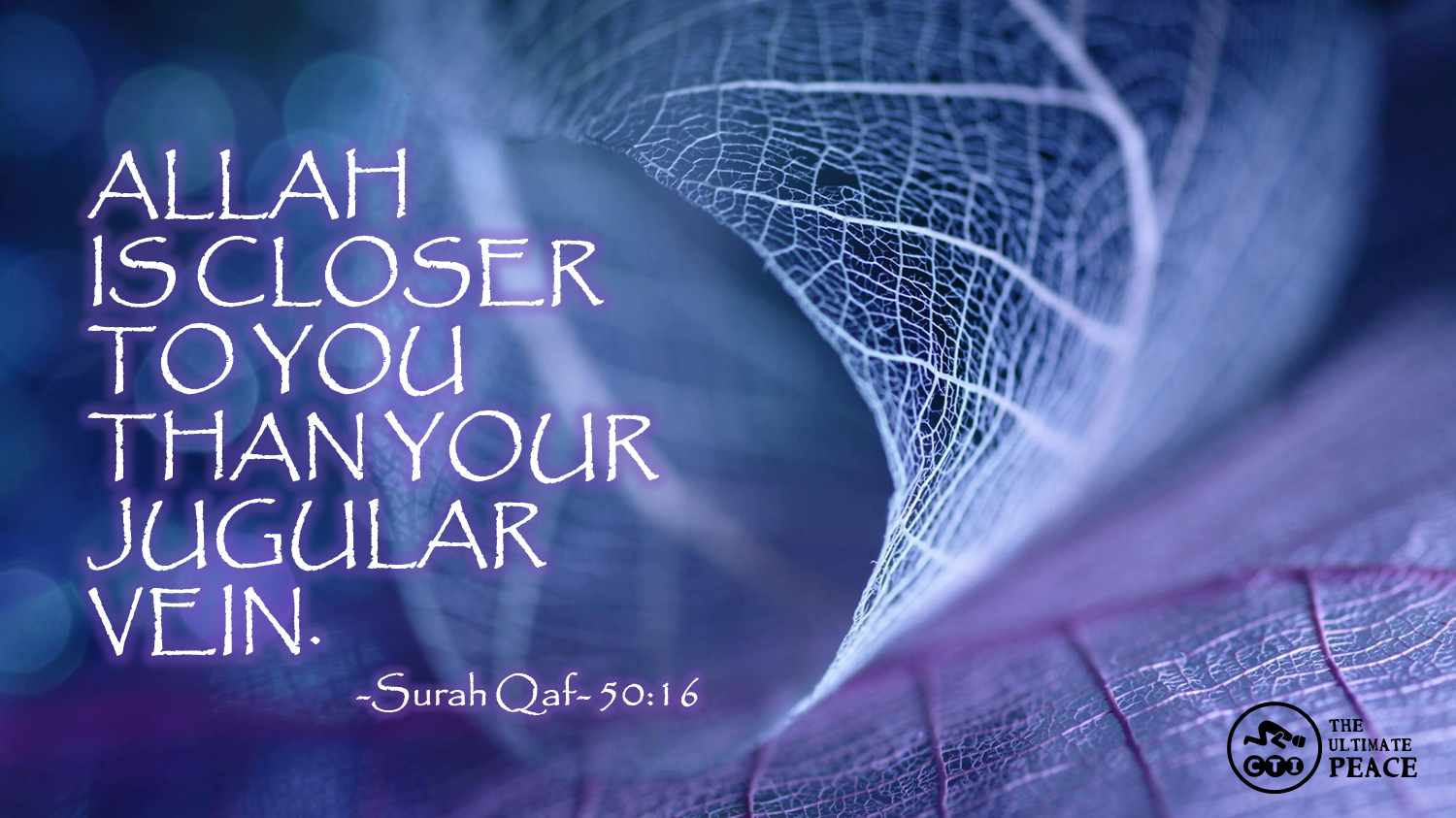Allah Is Closer To You Than Your Jugular Vein Surah Qaf
