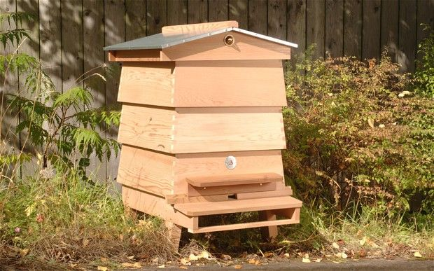 The Best Beehives And Houses Apiaries Bee Supplies