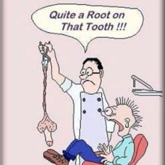 Elis Dirty Jokes Dentist: LOL!! Sorry......dental Humor