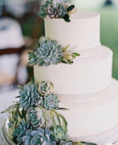 Cake decorating kit - succulents for cake