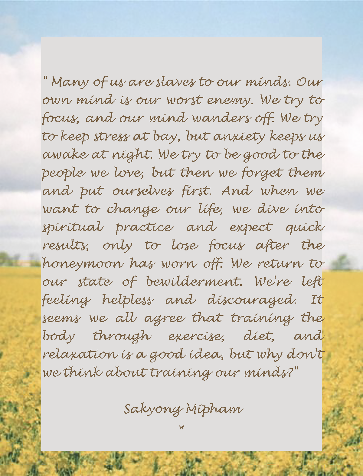 """"""" Many of us are slaves to our minds. Our own mind is our worst enemy. We try to focus, and our mind wanders off. We try to keep stress at bay, but anxiety keeps us awake at night. We try to be good to the people we love, but then we forget them and put ourselves first. And when we want to change our life, we dive into spiritual practice and expect quick results, only to lose focus after the honeymoon has worn off. We return to our state of bewilderment.... Sakyong Mipham"""