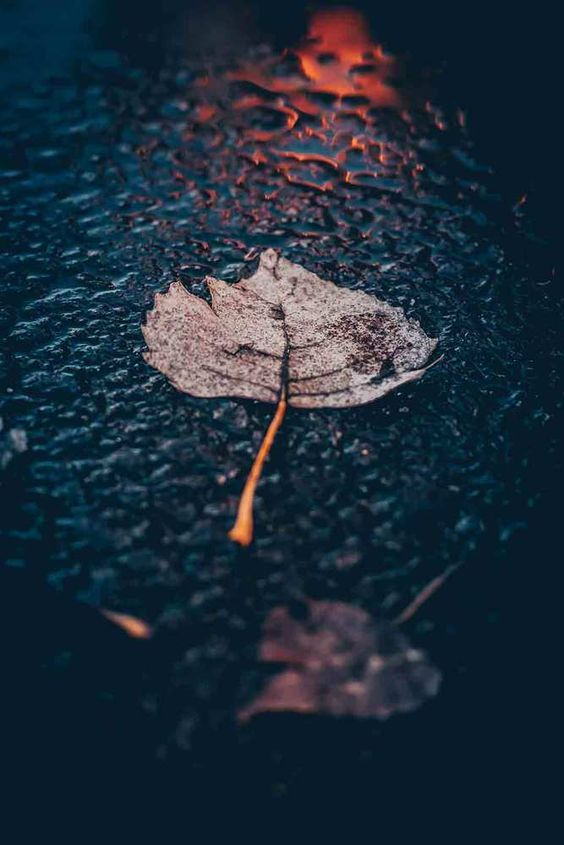 63 Meaningful Iphone Mobile Wallpapers Are Representing Your Mood Page 59 Of 63 Rain Pictures Rain Photography Beautiful Photography