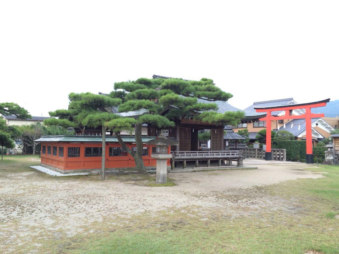 Otsu shiga Japan  唐崎神社