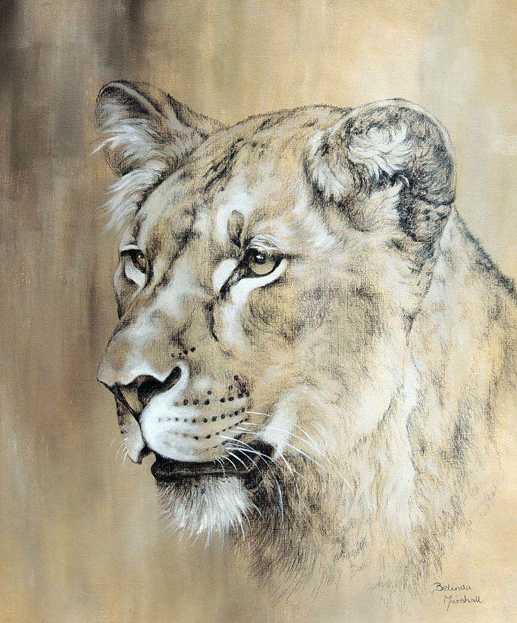 Wildlife Art by Zimbabwean artist Belinda Marshall