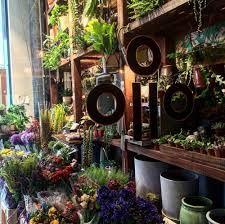 Image result for that flower shop hattie fox