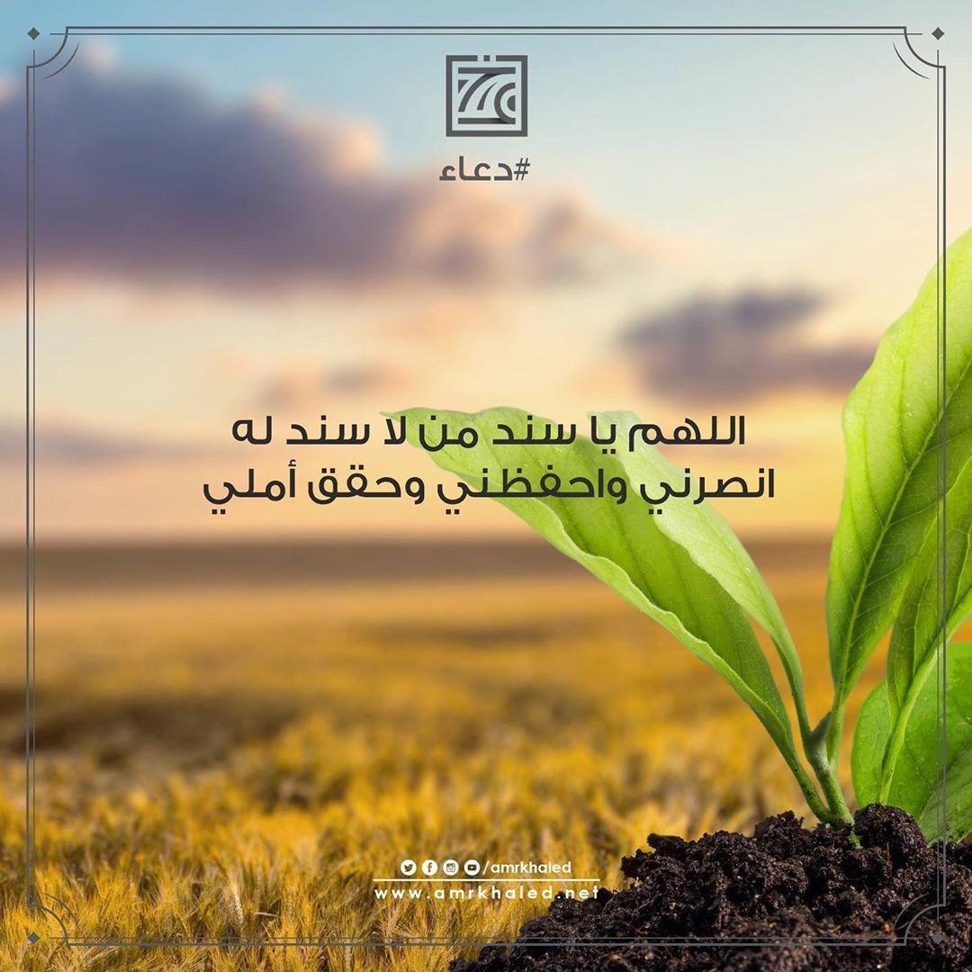 Amr Khaled On Instagram اللهم آمين يارب دعاء عمرو خالد Amrkhaled Islam Instagram Plants