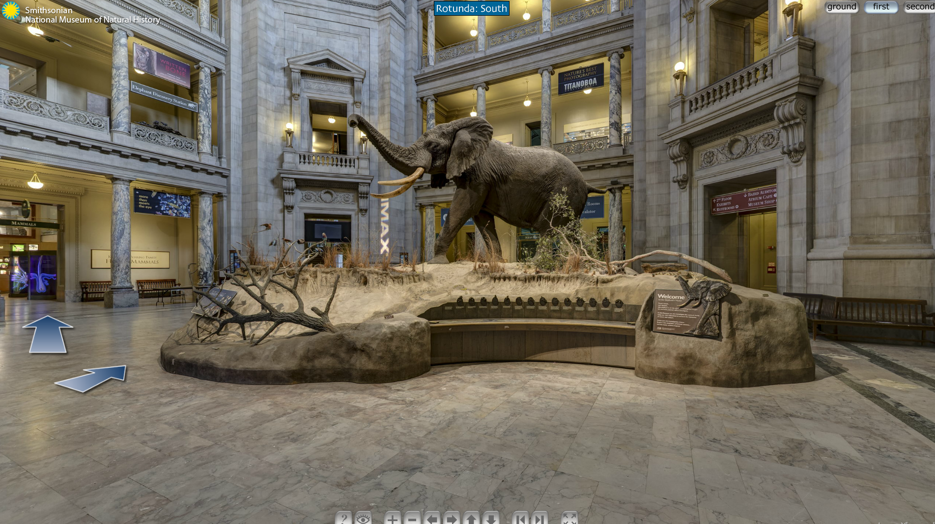Virtual tour of the Smithsonian. Awesome. http//www.mnh