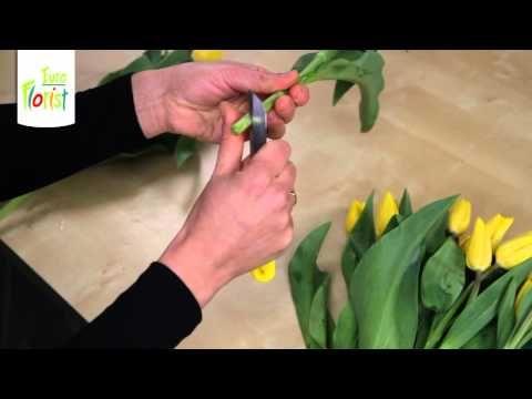Jak Postepowac Z Cietymi Tulipanami Hands