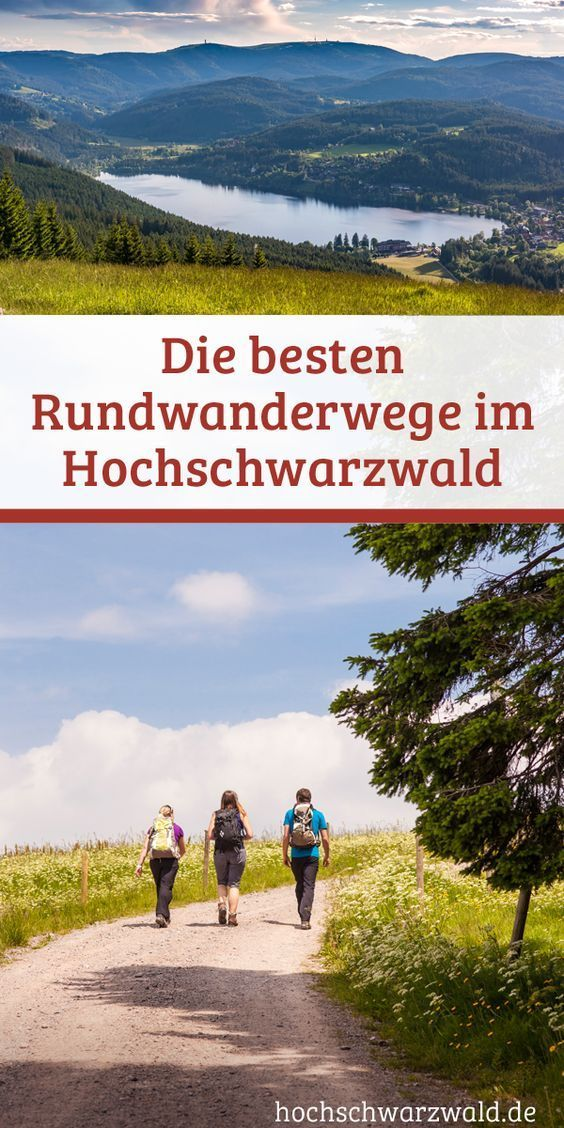 Rundwanderwege im Schwarzwald | Alle Touren im Überblick #hikingtrails