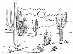 Image Result For Desert Landscape Coloring Pages Desert Drawing Cactus Drawing Cactus Art