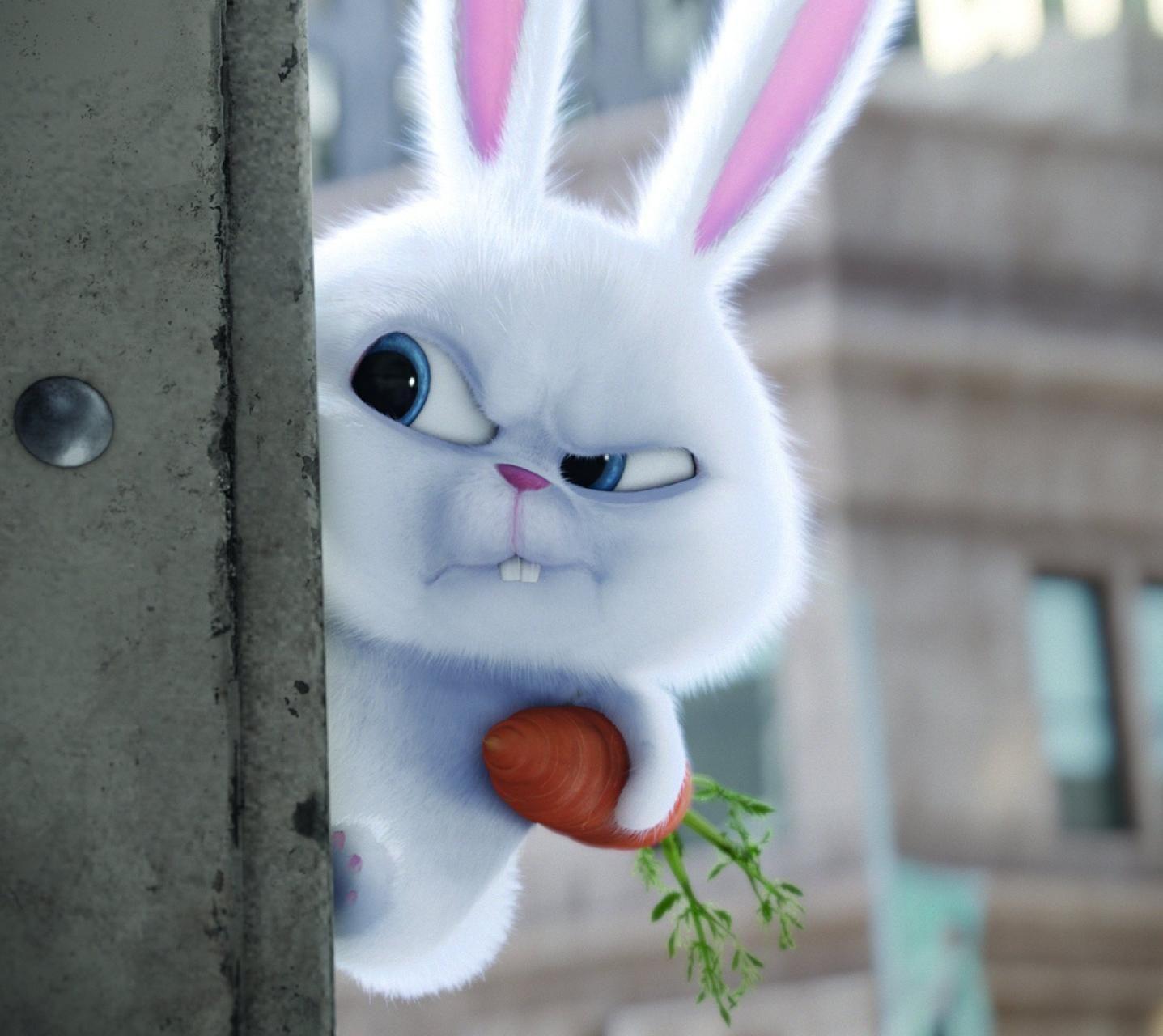 Download Bunny Wallpaper By Ahkioz F3 Free On Zedge Now