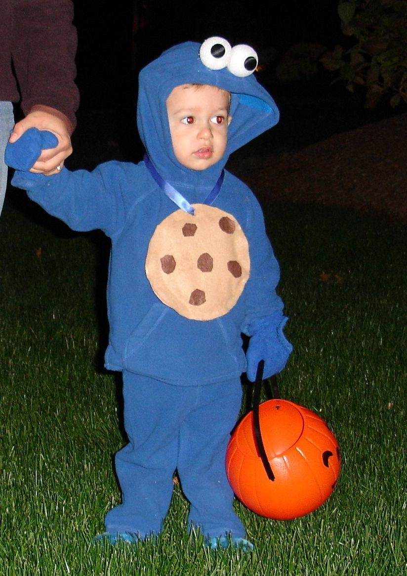 Diy Cookie Monster Diy Halloween Costumes For Kids Cookie Monster Halloween Costume Cookie Monster Costume