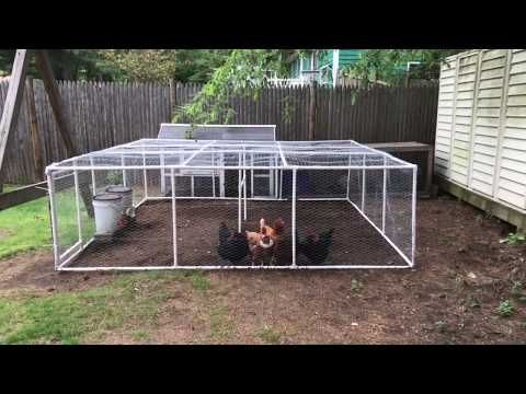 This Video Will Show You How I Made A 10 X 10 Pvc Chicken Run For Your Hens It Is Easy To Do Total Cost For Chicken Run Ideas Diy