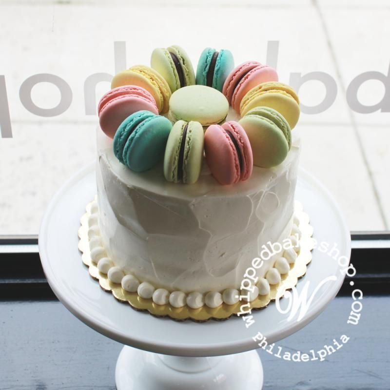 French macaron topped single tier cake tiered cakes