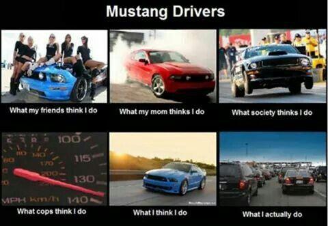 Mustang Drivers Mustang Humor Funny Car Memes Car Humor