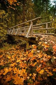 Oregon in the fall my most favorite