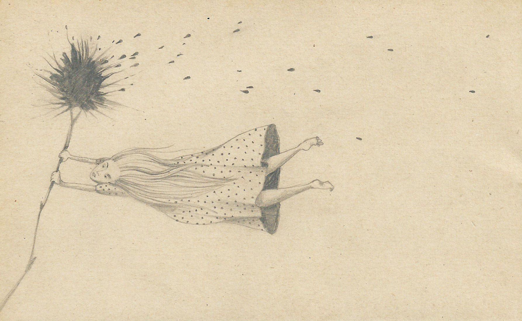 Sylvie Wibaut