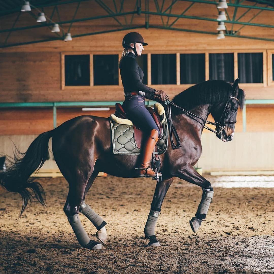 Equestrian Equestrian Outfits Horses Equestrian