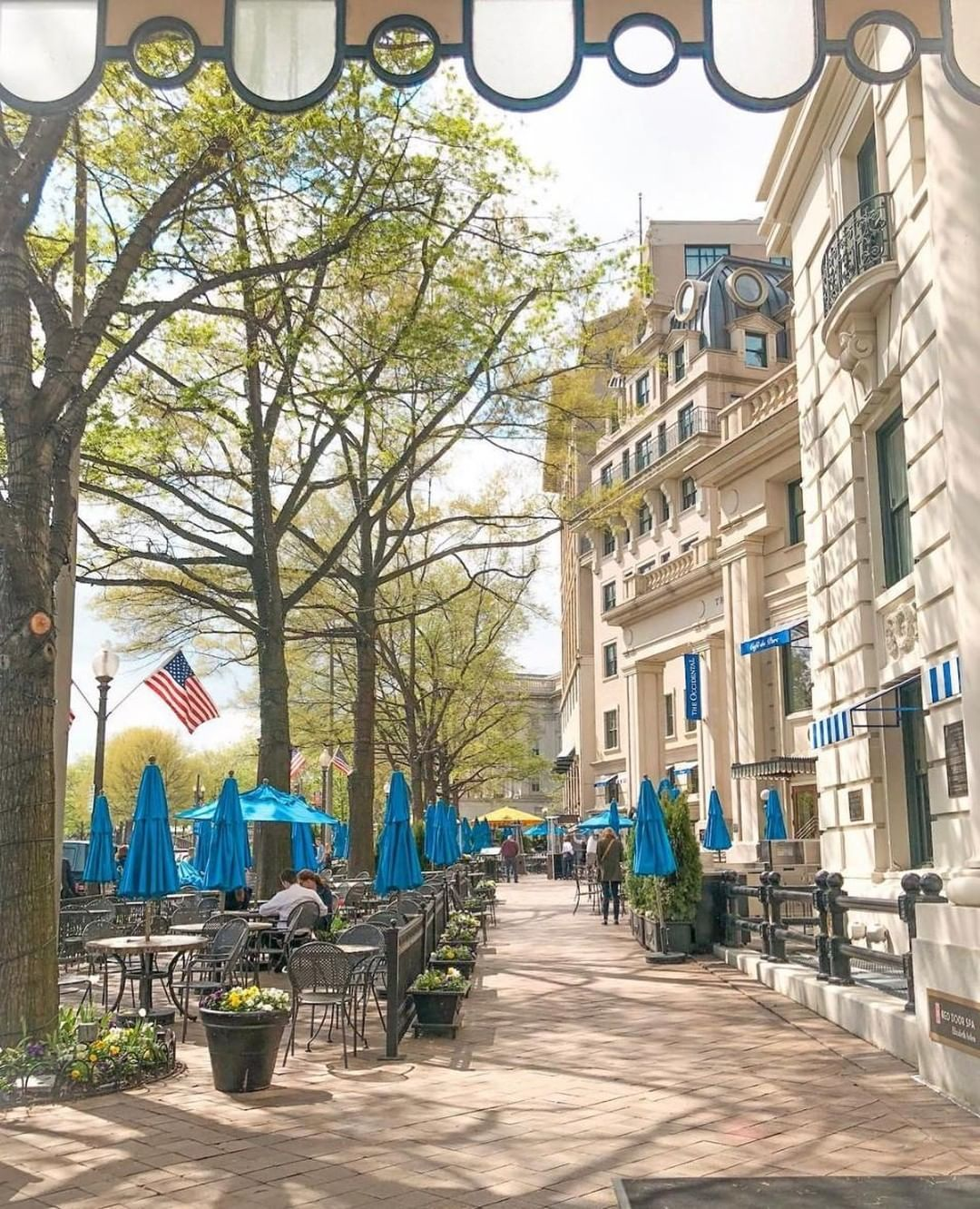 Willard Intercontinental D C On Instagram A Walk Past The Willard Is Never Complete Without A Stop At Cafe Du Parc Come See Summer Menu Walk Past Instagram