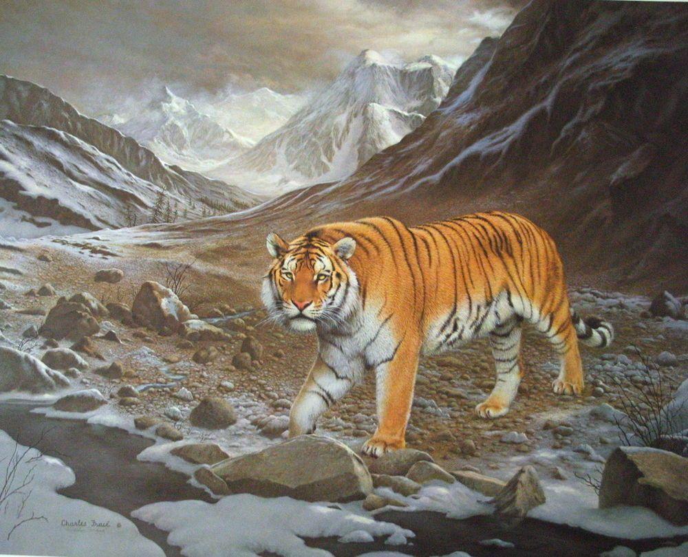 "Charles Frace ""Siberian Tiger"" + B&W Tiger print S/N"