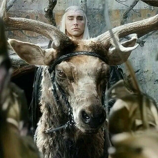 Image result for thranduil on elk in film