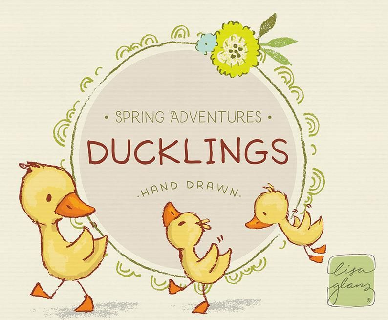 Spring Duckling Clipart Set Ducklings Clip Art Sweet Clipart Instant Download Cute Duck Clipart With Png Files For Commercial Use Clip Art Teddy Bear Clipart Paper Texture Background Watercolors