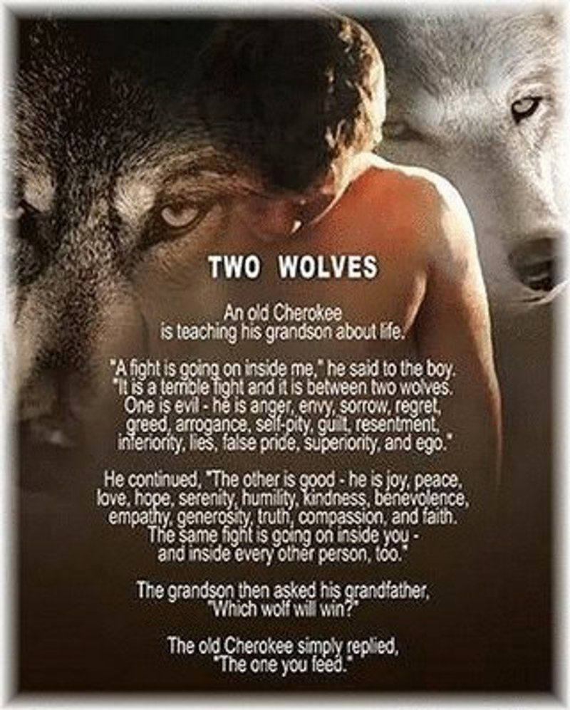 Native American Love Quotes Tale Of Two Wolves Cherokee  Jaxs Powell  November Is Native