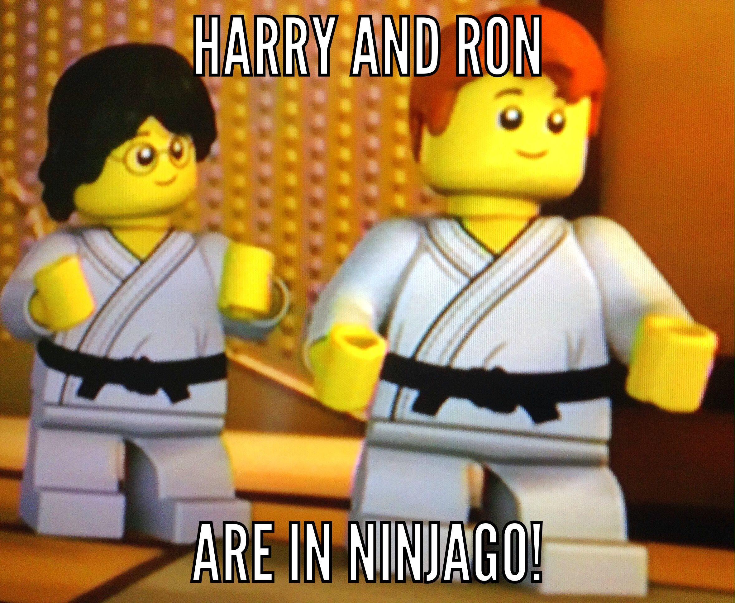 No Comment Ninjago Memes Harry Potter Funny Ninjago