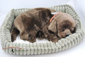 Chocolate Lab Perfect Petzzz Life Like Breathing Dog Lab Dogs