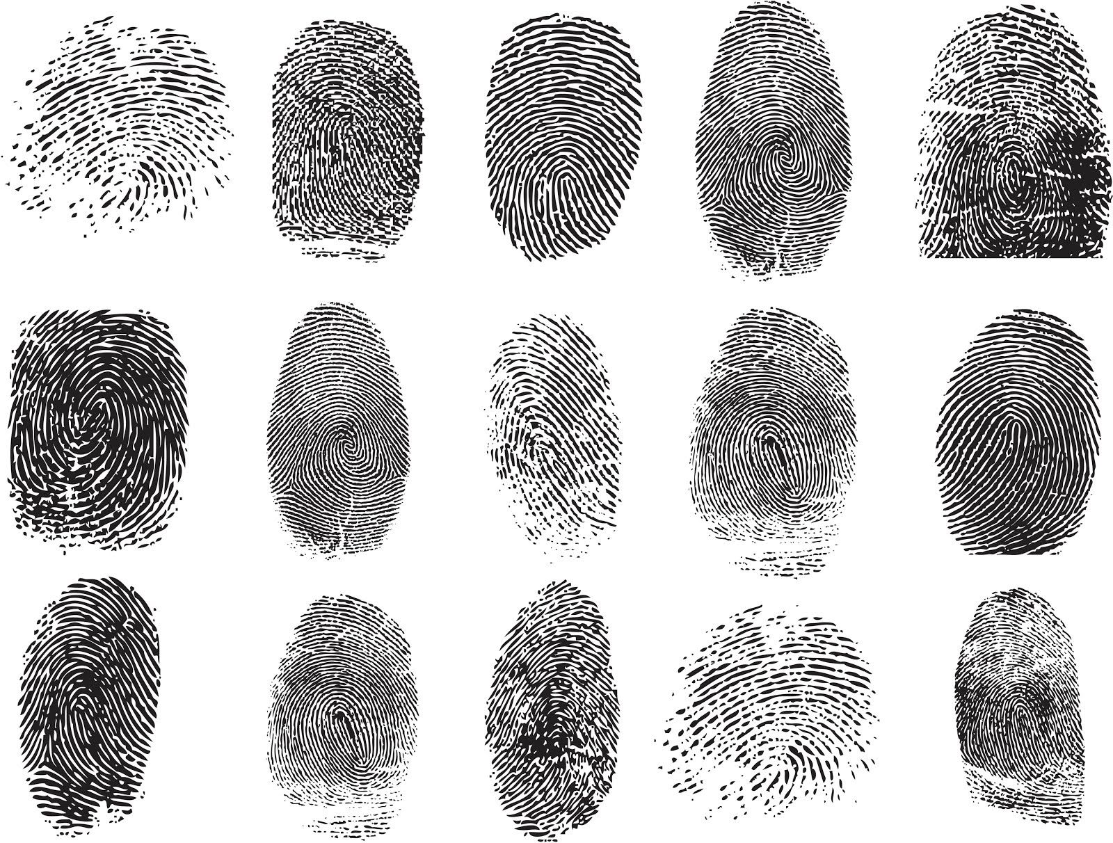 Fingerprint Matching Is Biased By The Assessor S