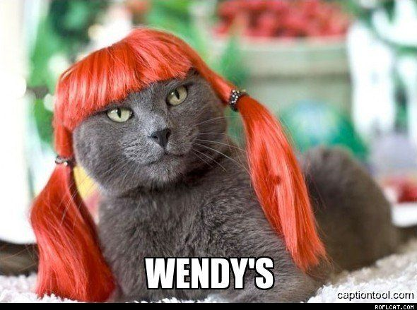 Two double parakeet combos please......hold the feathers. Meow!!! I love that wig.