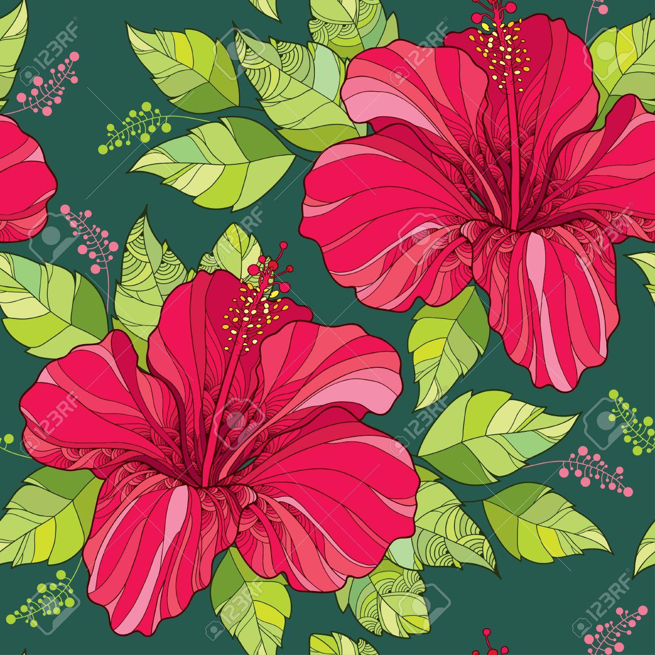Sin patrón, con la flor del hibisco chino en hojas adornadas rojas y ...