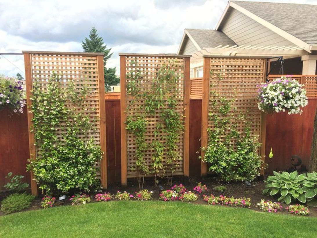 59 Inspired Privacy Fence Ideas To Get The Best Look Of Your House