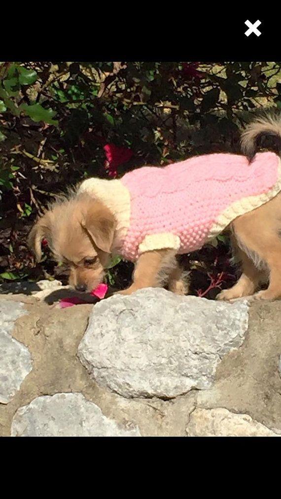 Fruhling Hund Pullover Strick Tri Kabel Von Bychancedesigns