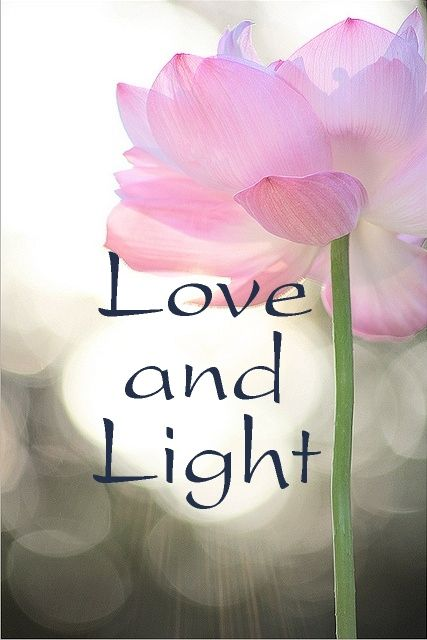 Love And Light Quotes Love and Light! | Encouragement | Love, light, Love, Love Quotes Love And Light Quotes