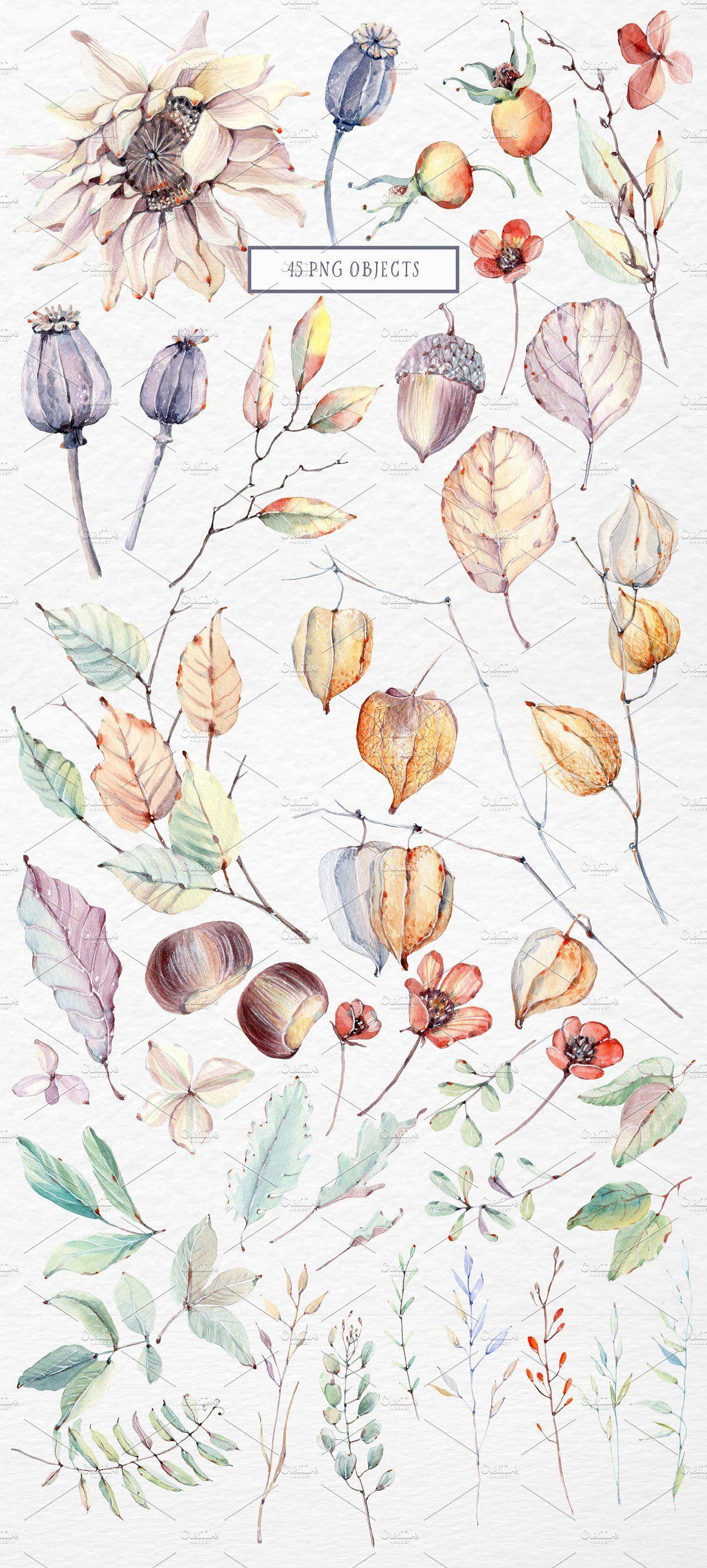 Quiet august watercolor set by lemaris on creativemarket artsy