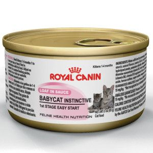 Royal Canin Babycat Instinctive Canned Kitten Food Petsmart Kitten Food Canned Cat Food Feline Health
