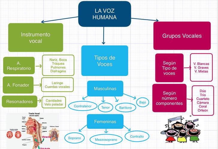 La Voz Humana Mapa Conceptual Con Baiboard Voz Humana Enseñanza Musical La Voz