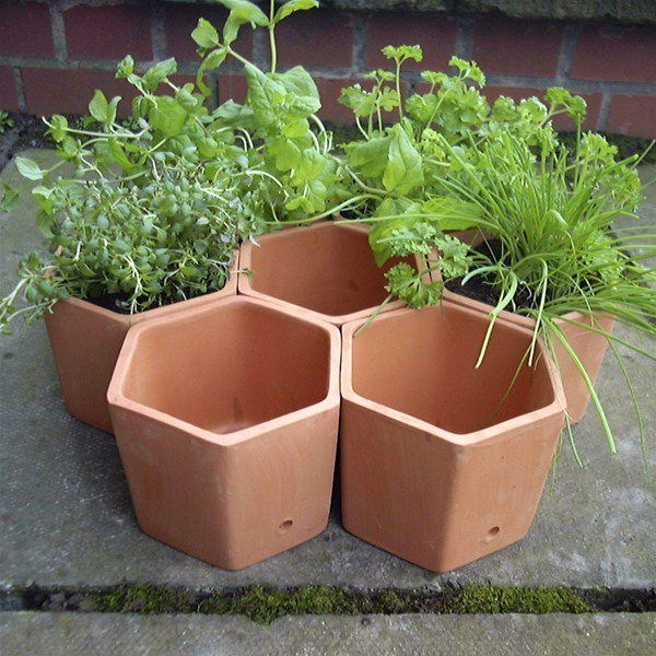 Attractive Terracotta Hexagonal Herb Garden Planter Set