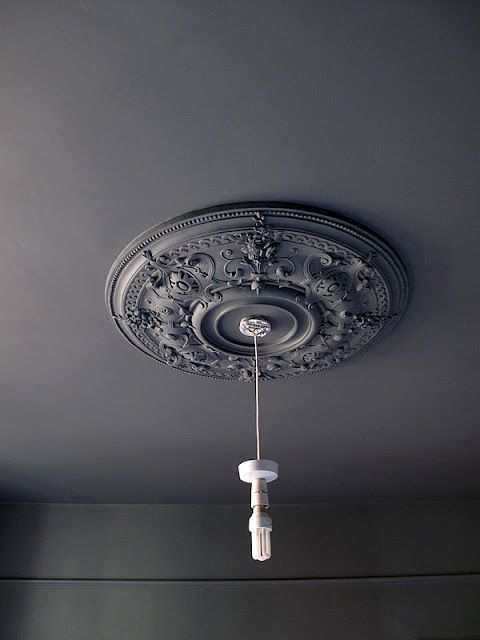 Black Ceiling Medallion Enchanting Charcoal Ceiling Medallion  Bright Lights  Lighting Inspiration Design Inspiration