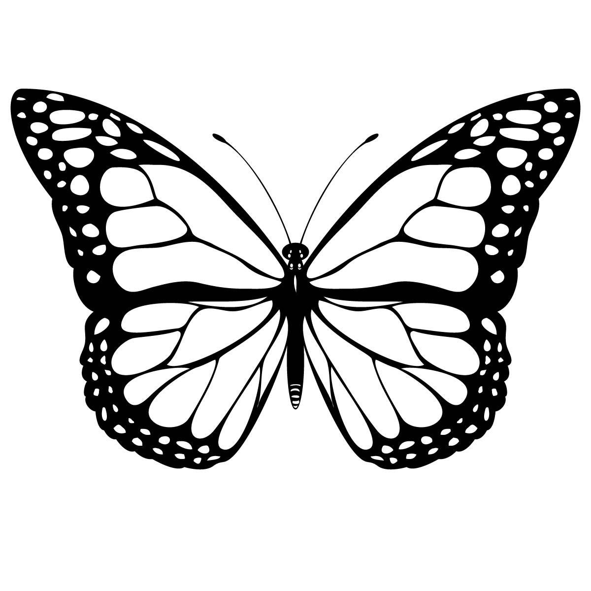 Monarch Butterfly Free Coloring Pages Color In Before After Printing