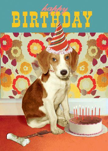 Happy Birthday Dog Greeting Card By Max Hernn Happy Birthday