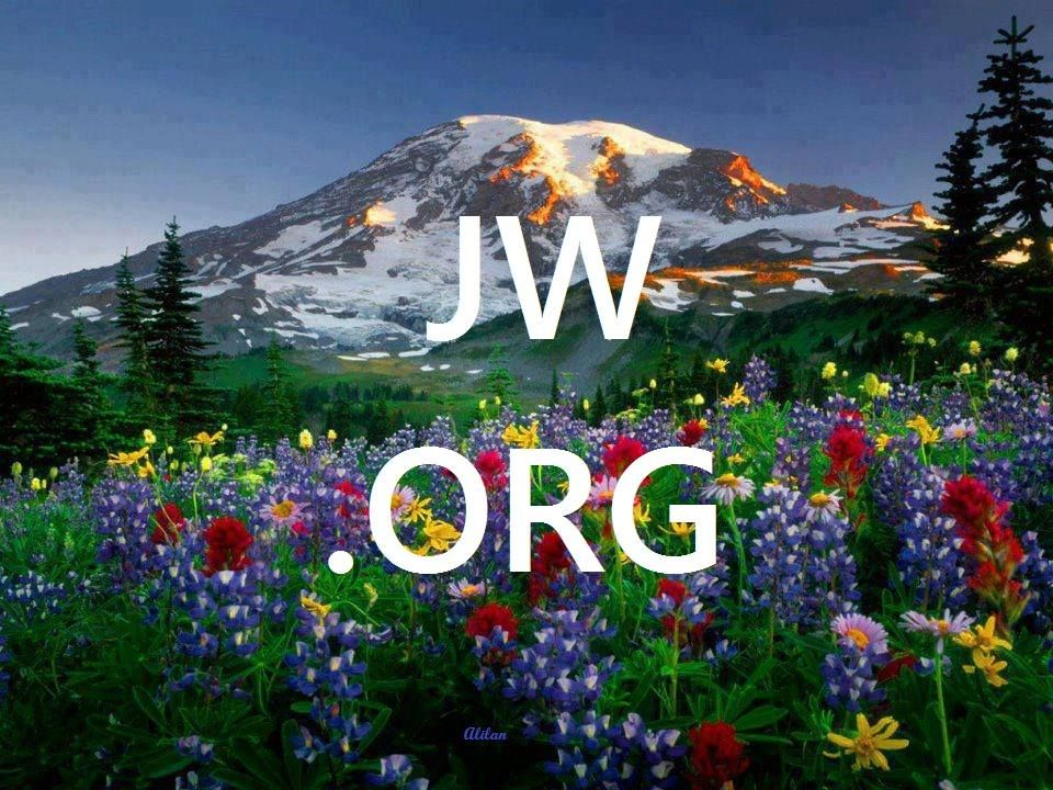 Visit This Site To Learn About Jehovah And His Word The Bible The Place To Be Jw Org Mount Rainier National Park Rainier National Park