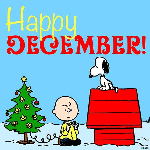 Happy New Year Charlie Brown Quotes: 25+ Unique Happy December Ideas On Pinterest