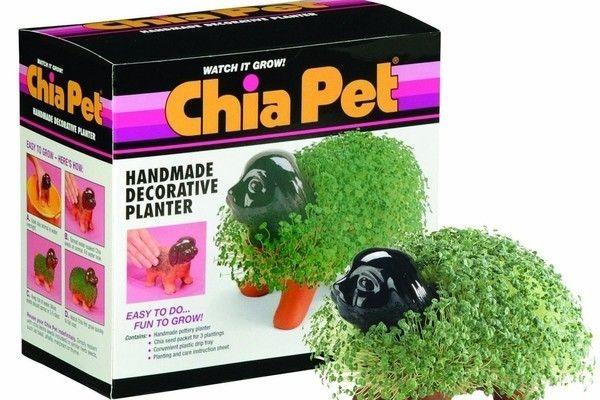 Chia Pet Fingerlings Monkey Decorative Pottery Planter New