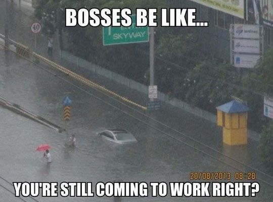 33870da03f3c8d30877fb5169d34b093 bosses be like , click the link to view today's funniest pictures