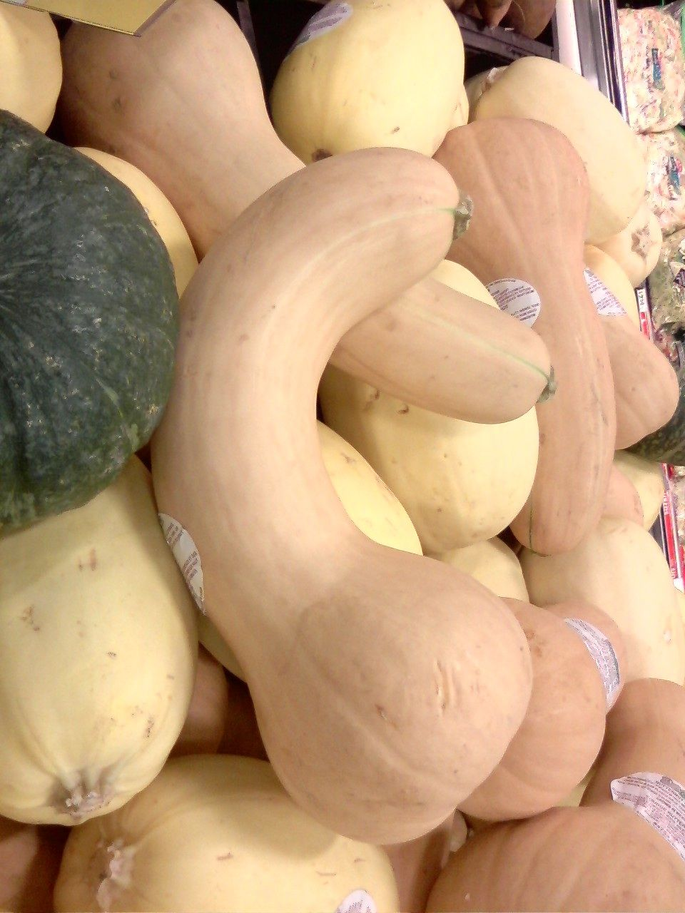 Image result for phallic butternut squash""