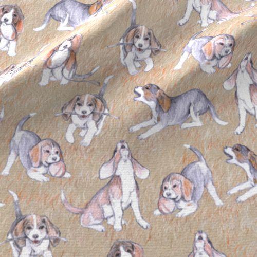 Wallpaper Playful Beagle Pups Revised Beagle Puppy Beagle Lap Dogs